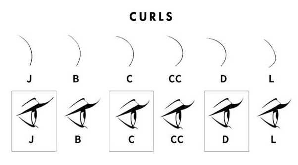 Eyelash Extensions Curl Types Chart